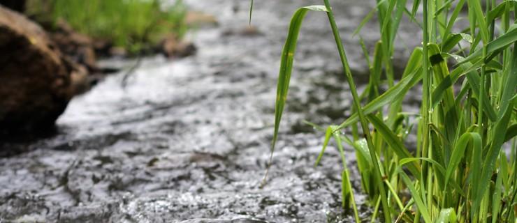 Nidda - Auen- und Gewässerschutz Wetterau e.V.